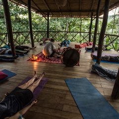 Sound healing Time of Transition Retreat